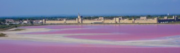 salin aigues-mortes